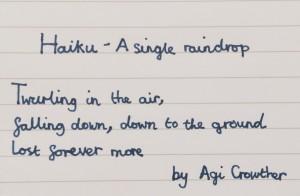Agi C Haiku